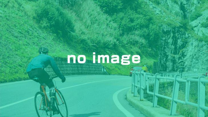 第11回 奈良盆地一周シクロラリー